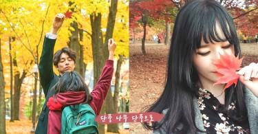 跟《鬼怪》來個紅葉漫步~韓國9月起進入楓葉泛紅時期,裝裝鬼怪新娘的時候到了~